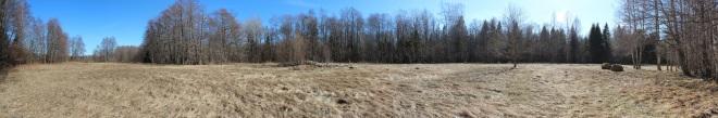 Ula küla jaanituleplatsi panoraam 2013 aasta kevadel.