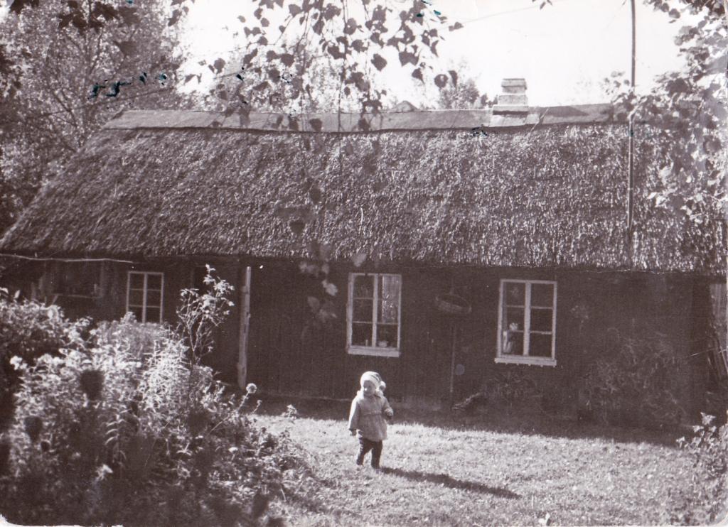 Vanava