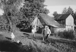Vanavas 1983