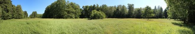 Ula küla jaanitule plats 2013